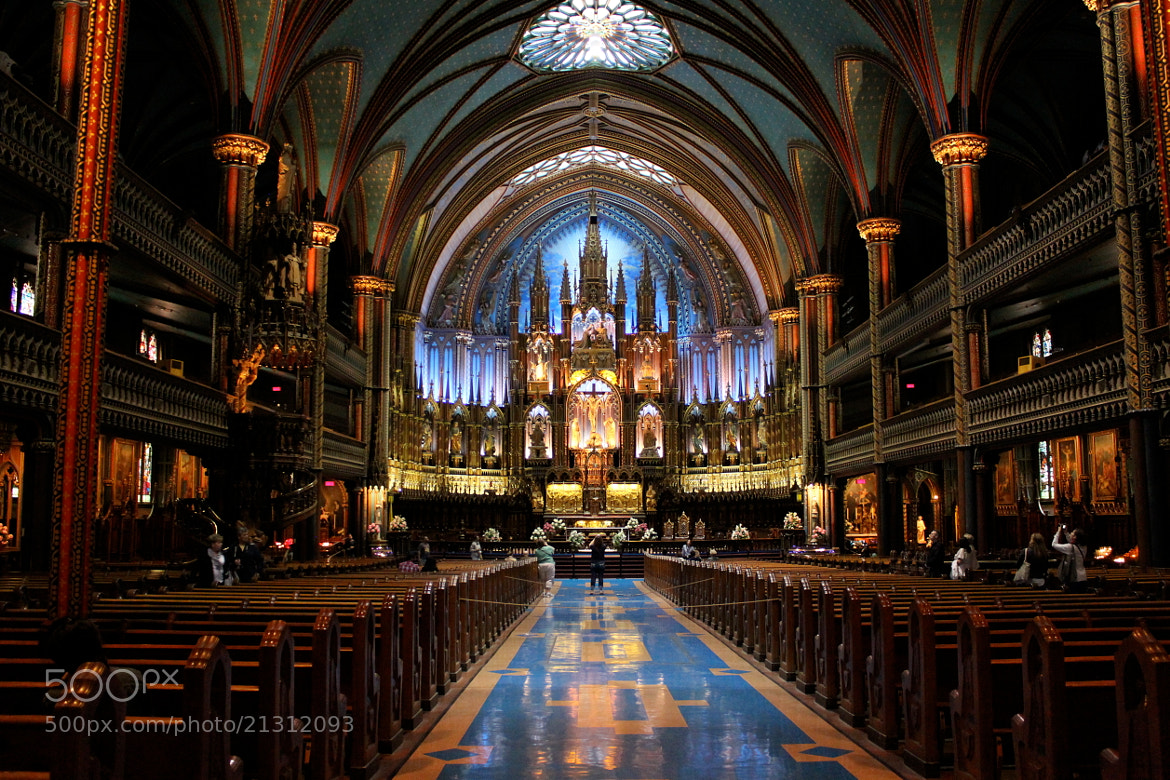 Photograph Notre Dame Basilica by Nikhita Singh on 500px