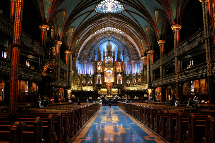 most beautiful cities in the world -Notre Dame Basilica by Nikhita Singh on 500px.com
