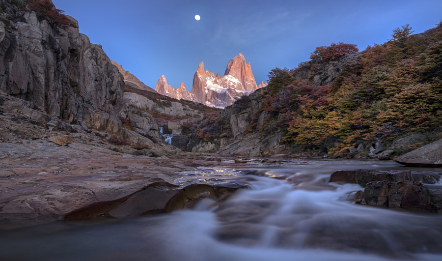 Wheels On The Bus by Timothy Poulton