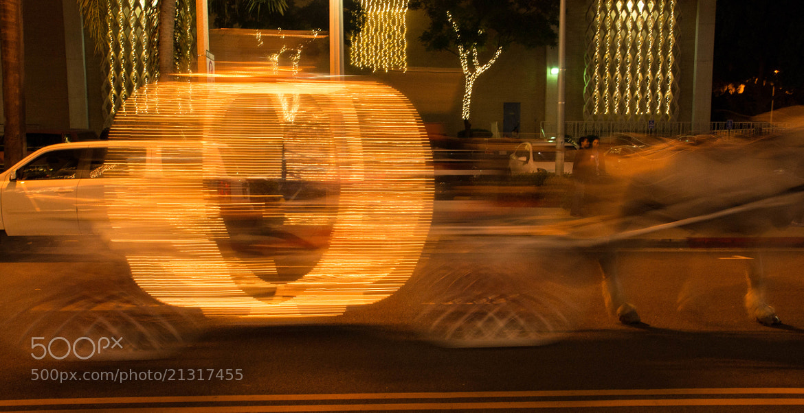 Photograph Horse and Carriage by Erik Anderson on 500px