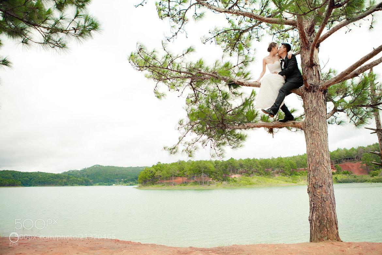 Photograph Ảnh cưới đẹp - Đà Lạt (Thái Vy, Tuấn Tước) by Ồ studio  www.opro.vn on 500px