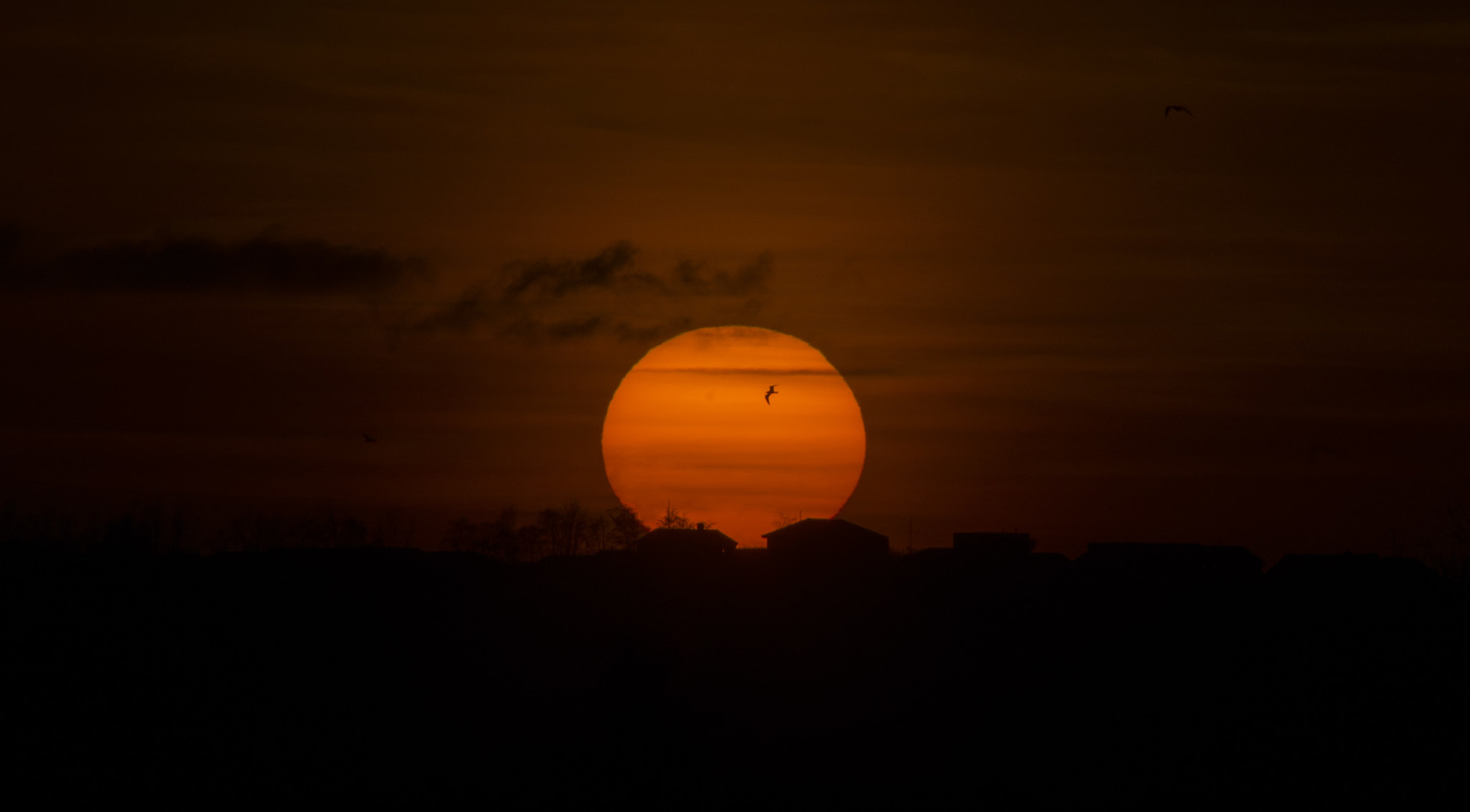 Photograph Sunset, the daily goodbye by Klaus Dreyer on 500px