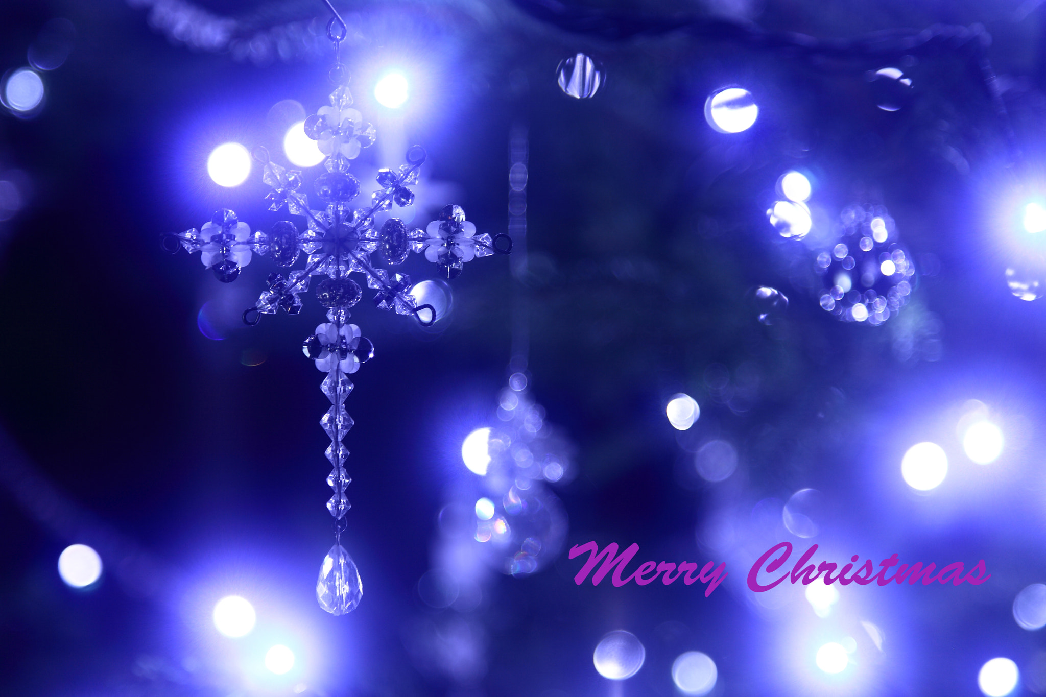 Photograph Merry Christmas~♪ by yume . on 500px