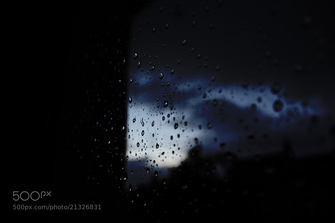 Photograph Raindrops by Sheyenne Ettinger on 500px