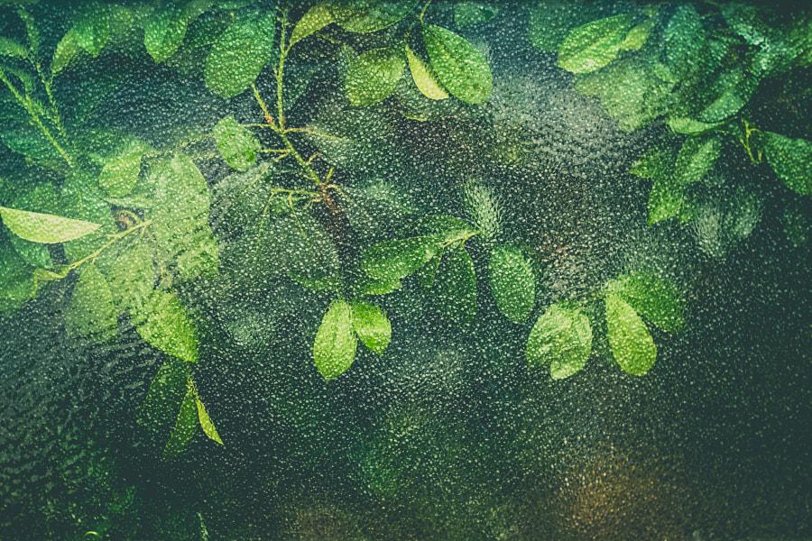 textures&patterns by Juraj Varga on 500px.com