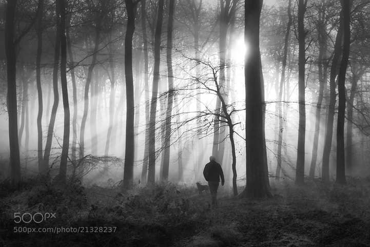 Photograph Morning Dog Walk by Ceri Jones on 500px