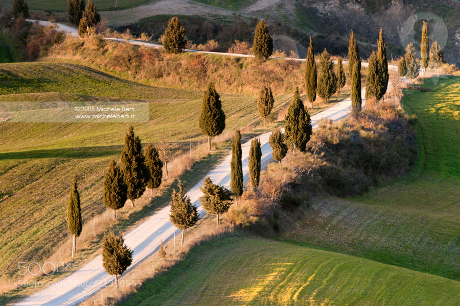 Photograph tuscany dirt road by michele berti on 500px