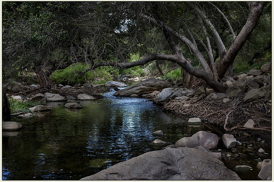 Escondido Creek