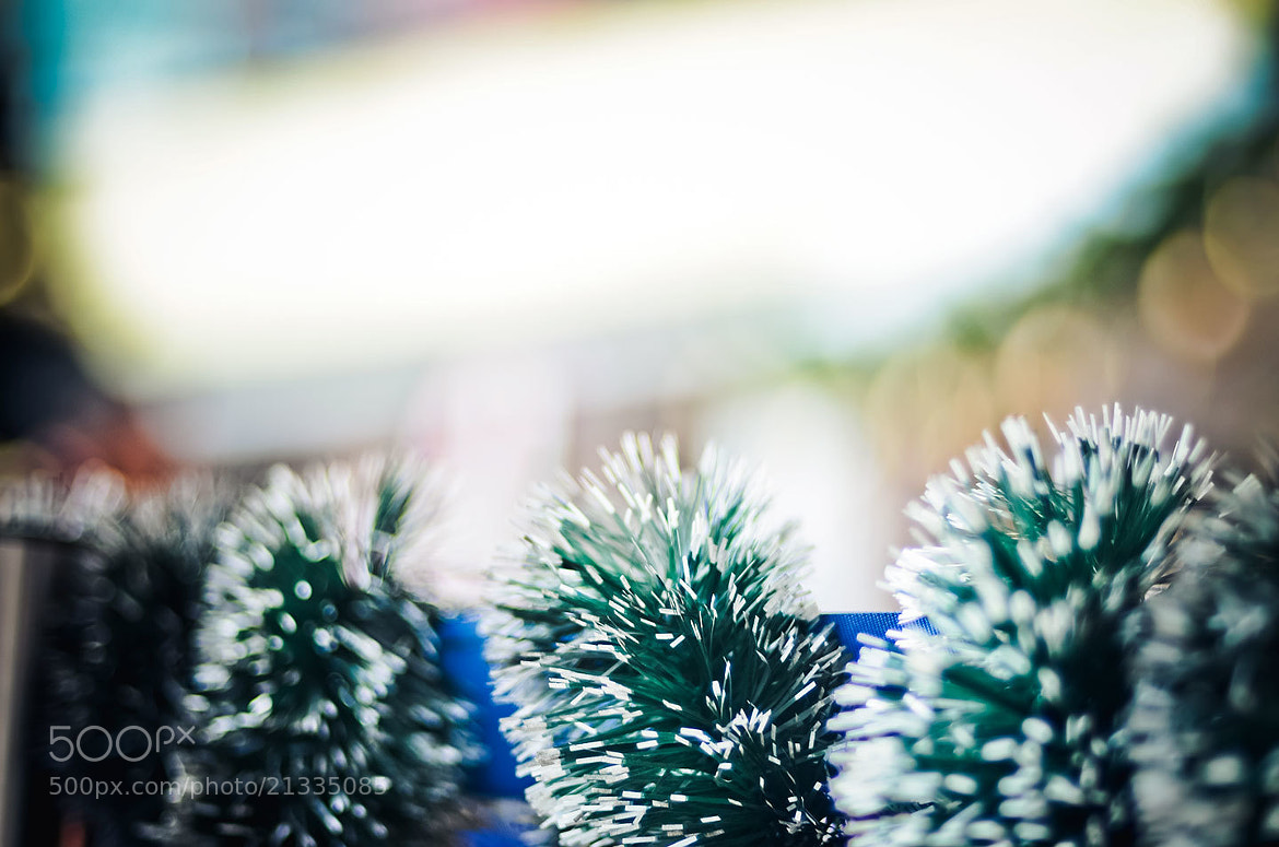 Photograph Spikes by Bady qb on 500px