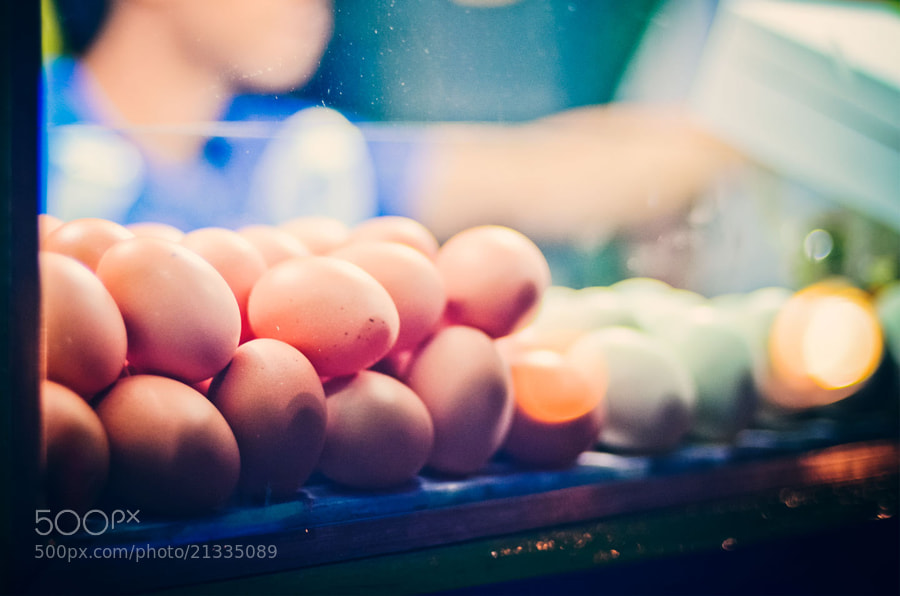Photograph Eggs by Bady qb on 500px