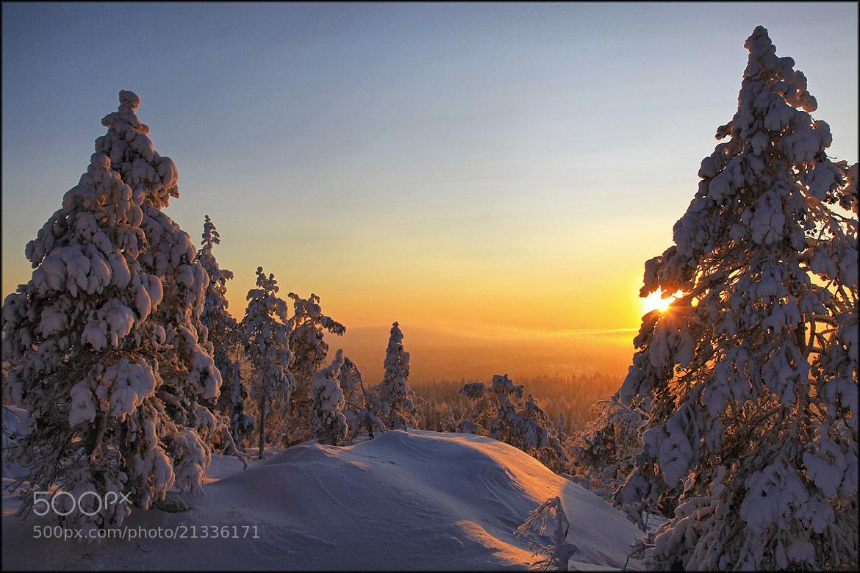 Photograph Finnish evening ... by Valtteri Mulkahainen on 500px