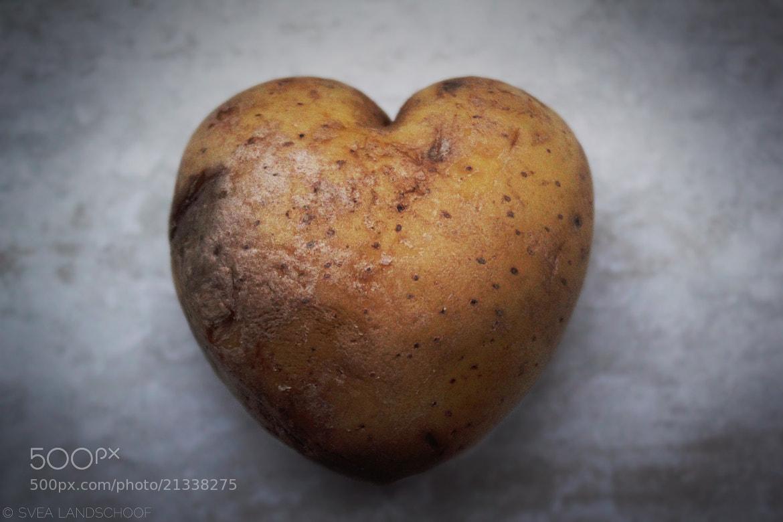 Photograph Potato Love by Svea-Malina Landschoof on 500px