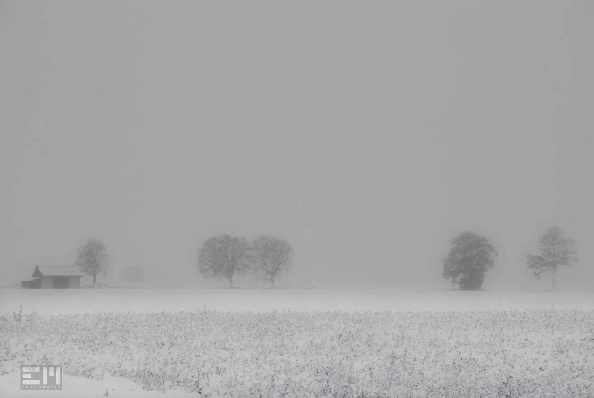 Photograph It's snowing by Edel Mohr on 500px