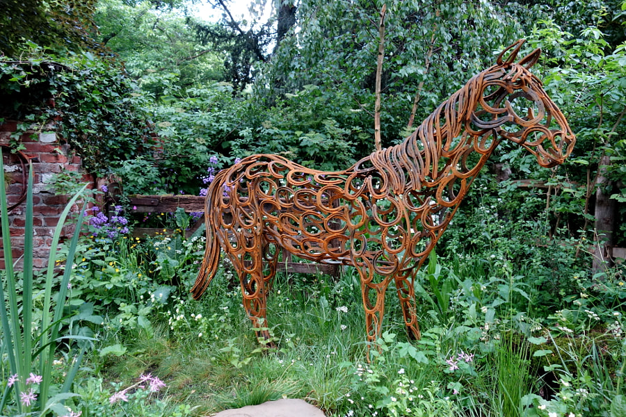 The World Horse Welfare Garden, Chelsea, 2017 by Sandra on 500px.com