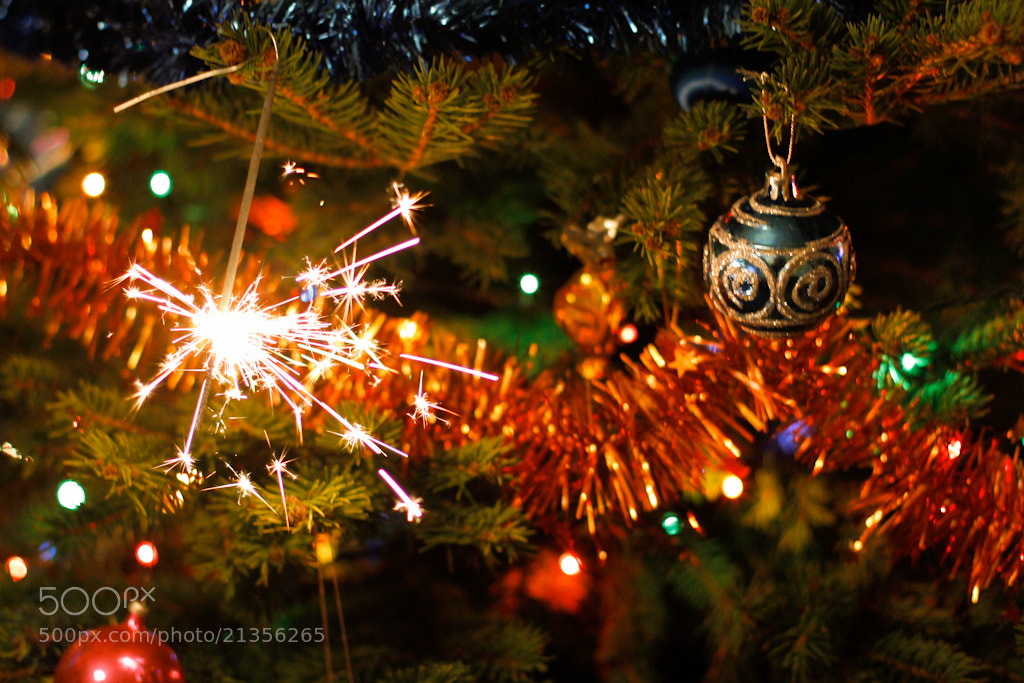 Photograph 359/365 - Merry Christmas 2012! by Gábor Nádai on 500px
