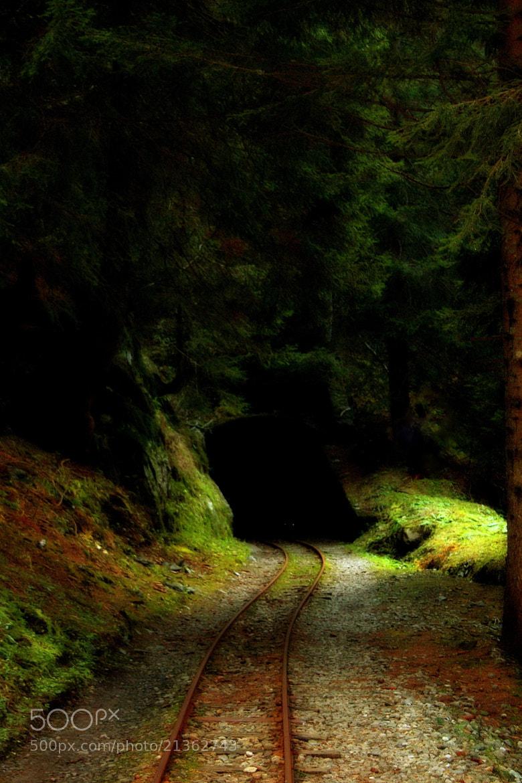 Photograph Gnomes railway by Daniela Balgera on 500px