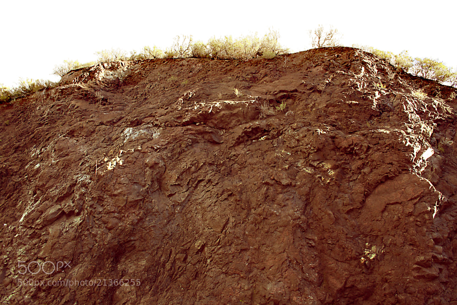 Mud covered hillside in Calabasas.