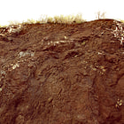 Mud covered hillside in Calabasas.