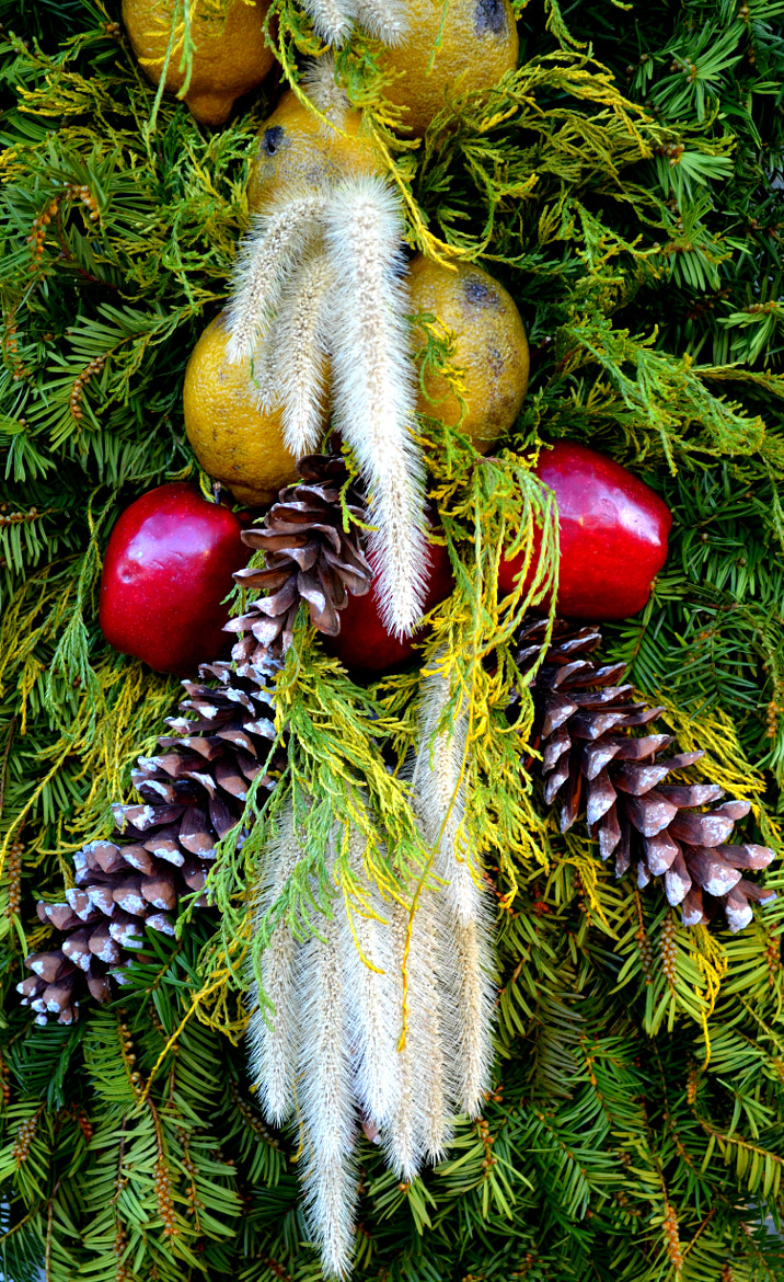 Photograph Holiday Décor by Kate Hentschel on 500px