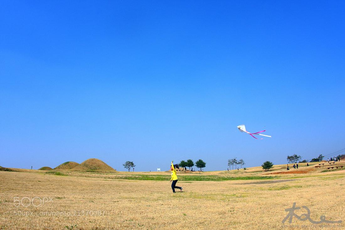 Photograph Fly a kite by kim seong-geun on 500px
