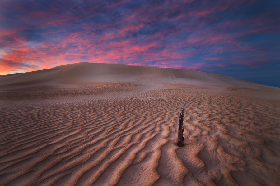 Photograph Gunyah Dreams  by Dylan Toh  & Marianne Lim on 500px