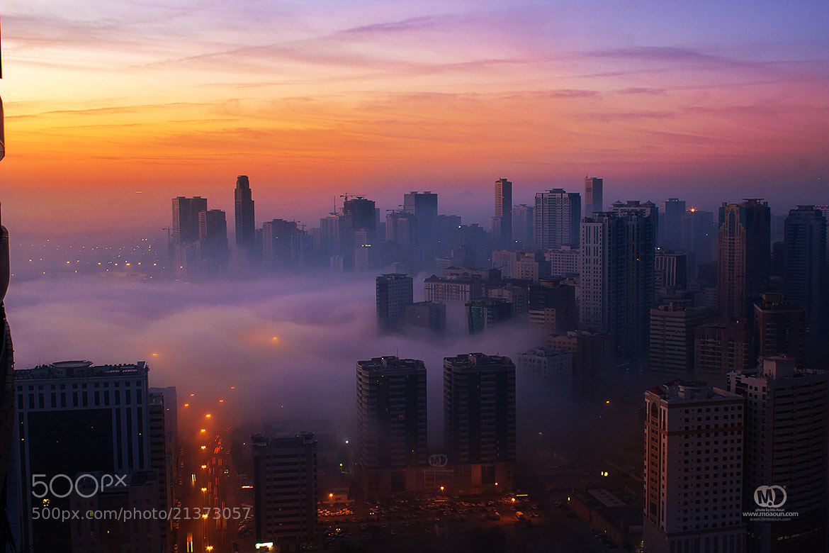 Photograph Dragoon Fog in the city. by MO AOUN PHOTO on 500px