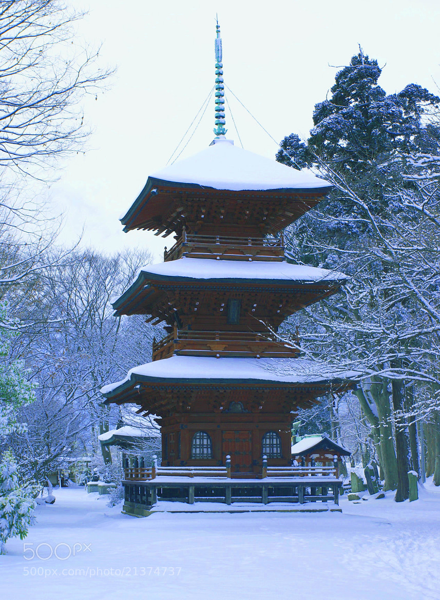 Photograph The winter Pagoda by Tim Ernst on 500px