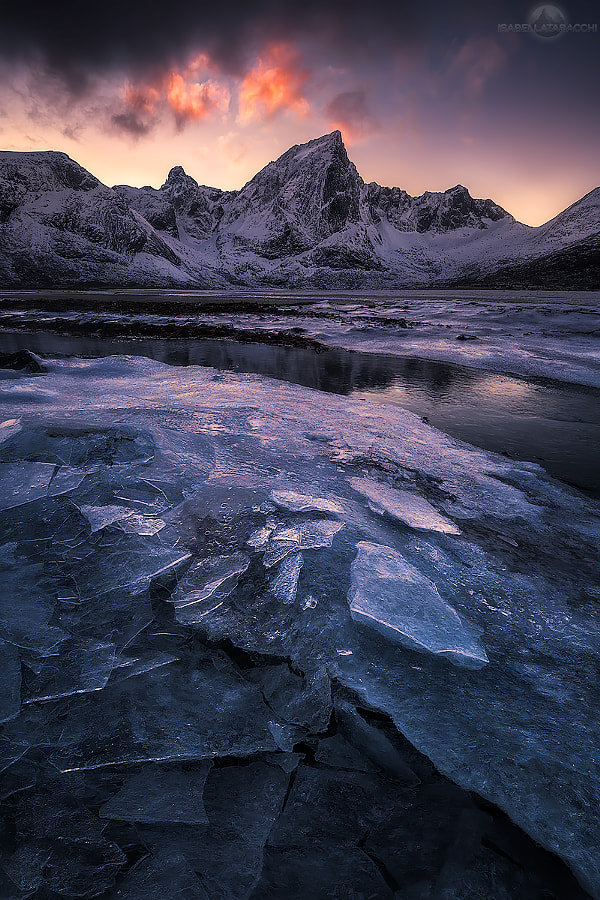 Icy shades by Isabella Tabacchi