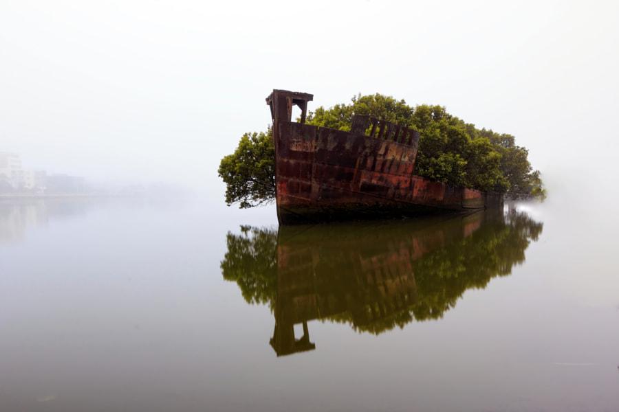 Floating Forest by Arfan Habib on 500px.com