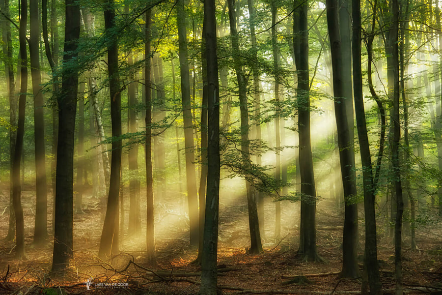 Cutting Rays by landscape photographer Lars van de Goor on 500px.com