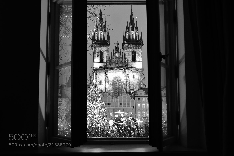Photograph Outside My Window 2 by Zuzana Blaskova on 500px