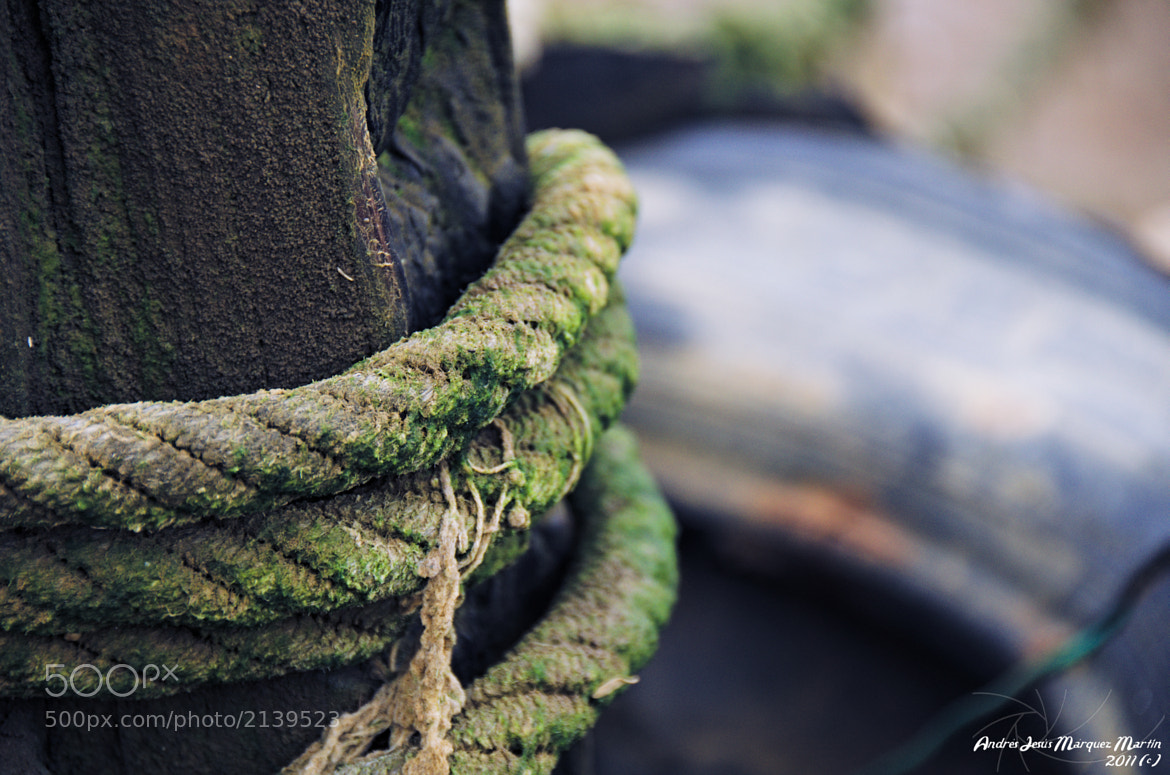 Photograph Damaged Rope by Andrés J. Márquez on 500px