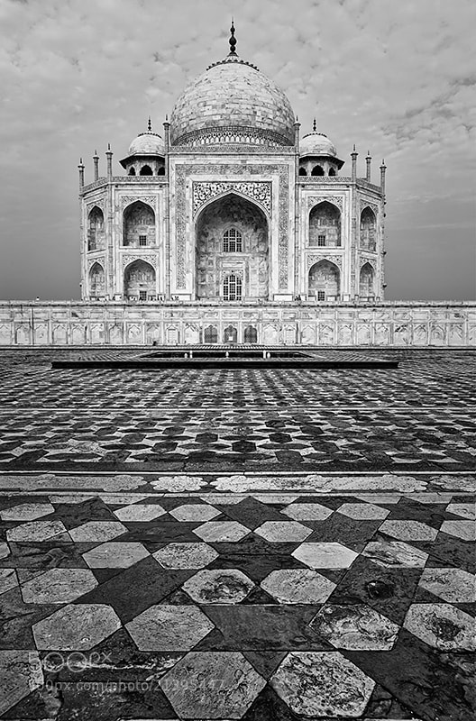 Photograph Way to the Taj Mahal by Sonia Blanco on 500px