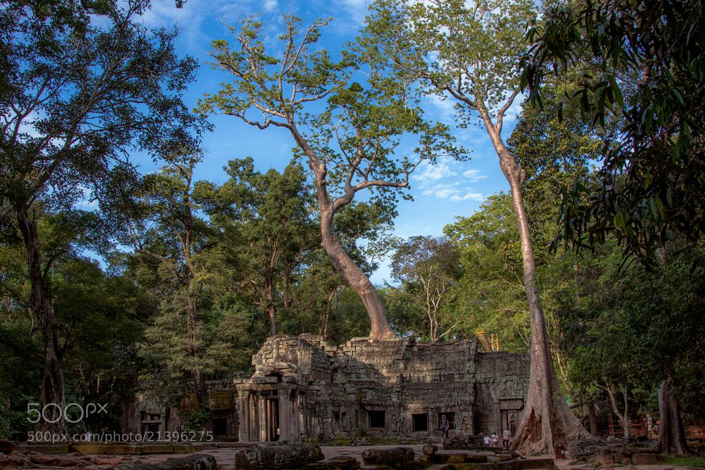 Photograph Jungle temple by Natasha  Belikova on 500px