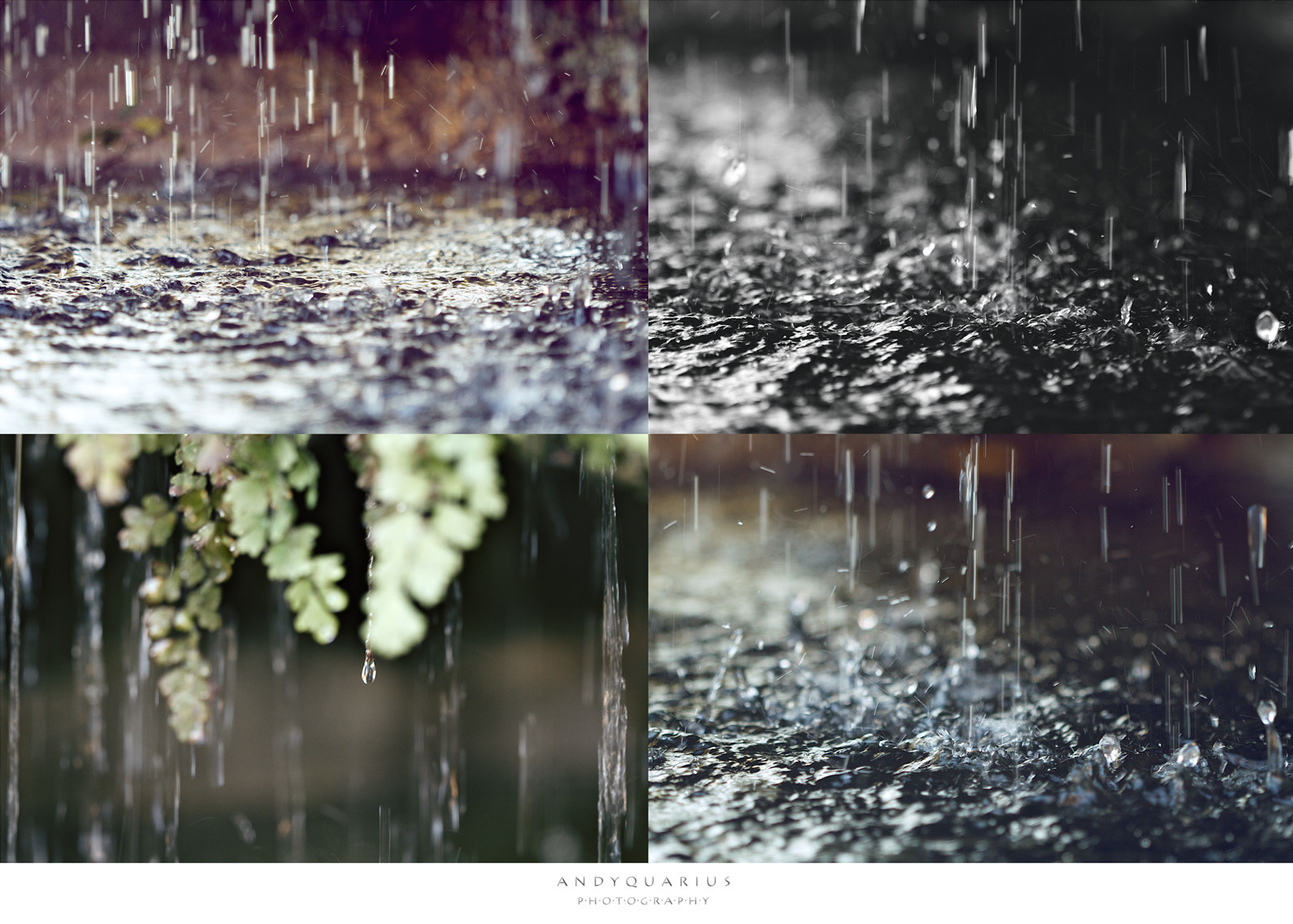 Photograph Gotas by Andy Quarius on 500px
