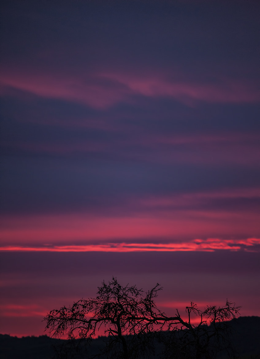 Photograph Sunrise at Christmas by Oscar Berrueta on 500px