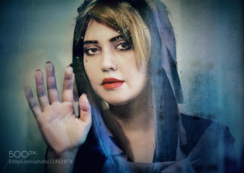 Photograph Frozen by Timucin Toprak on 500px