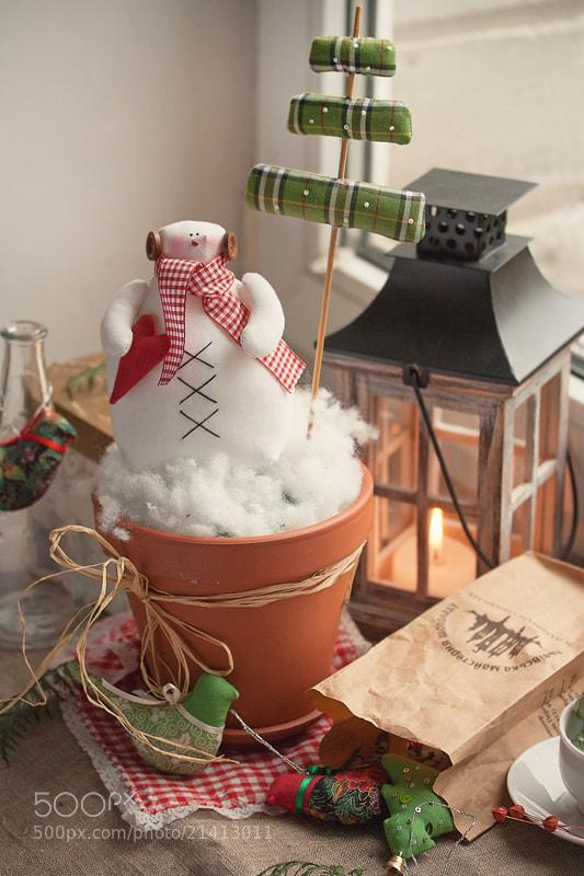 Photograph Merry Christmas! :) by Yulia Pletinka on 500px