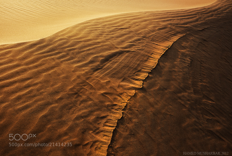 Photograph Tracks by Hamed Musharbak on 500px