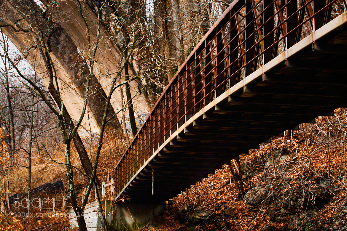 Photograph Footbridge by Jack Booth on 500px