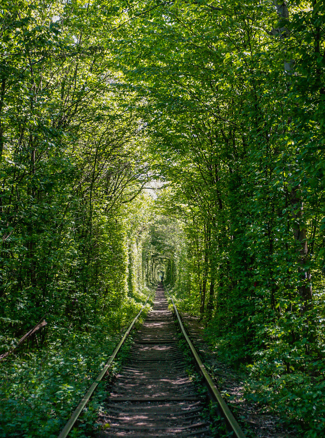 The Tunnel Of Love by Andrey Maystrenko on 500px.com