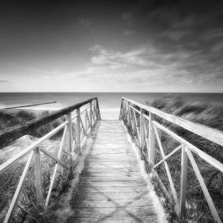 Bridge To The Ocean