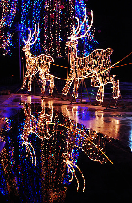 Photograph Christmas decorations by Ivelina Blagoeva on 500px