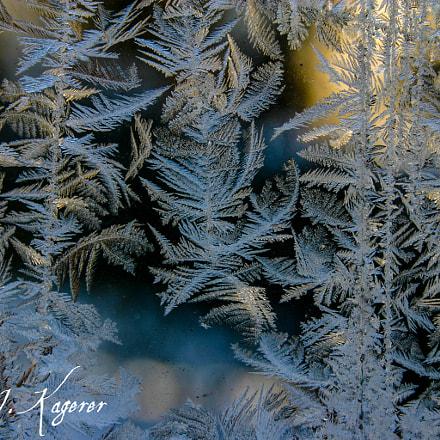 Eisblumenfenster