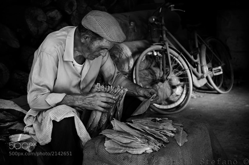 Photograph tabacco by Stefano Cretì on 500px