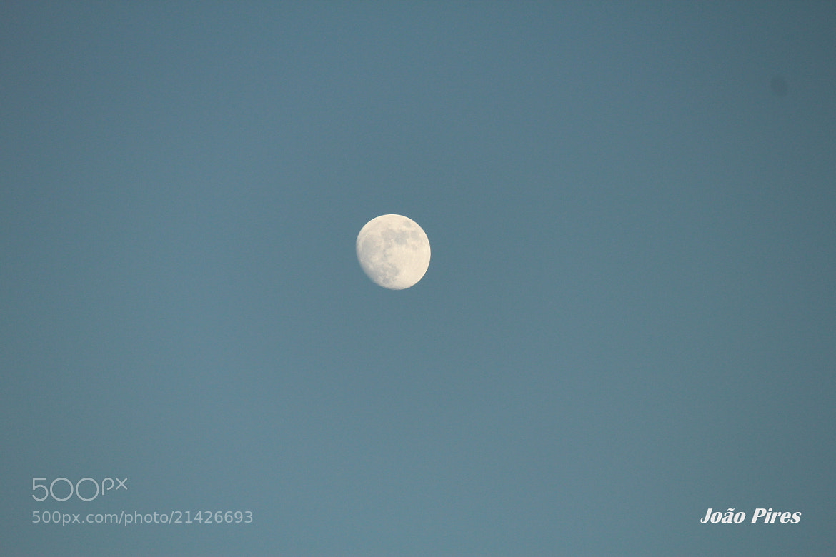 Photograph Lua by João Pires on 500px