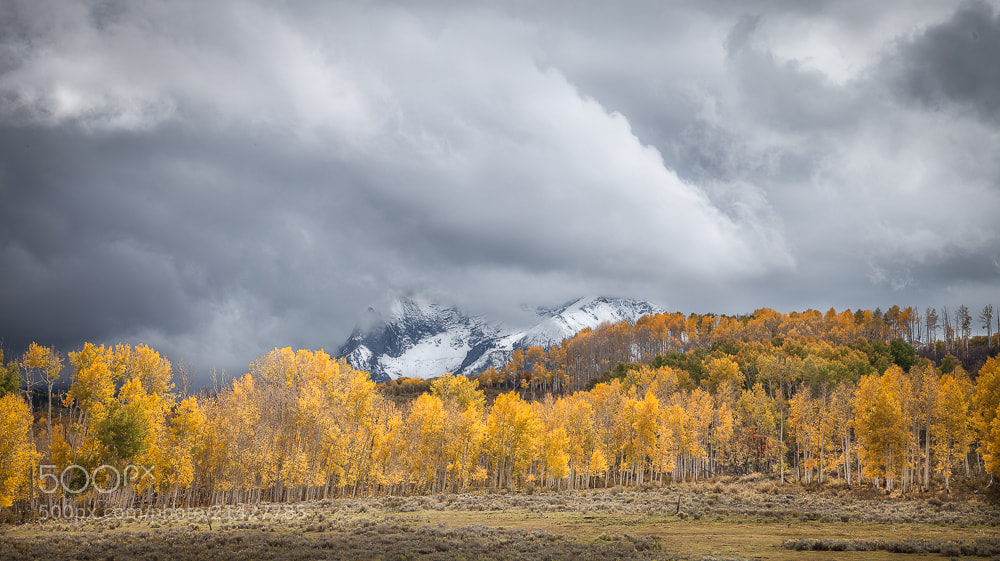 Photograph Colorado Fall Color by Valerie Millett on 500px