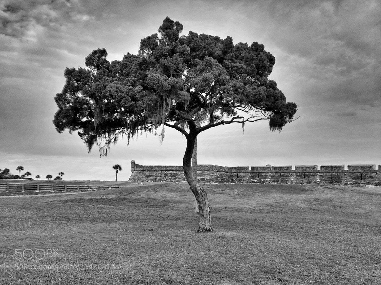 Photograph Castillo De San Marcos by Jack Pierson  on 500px