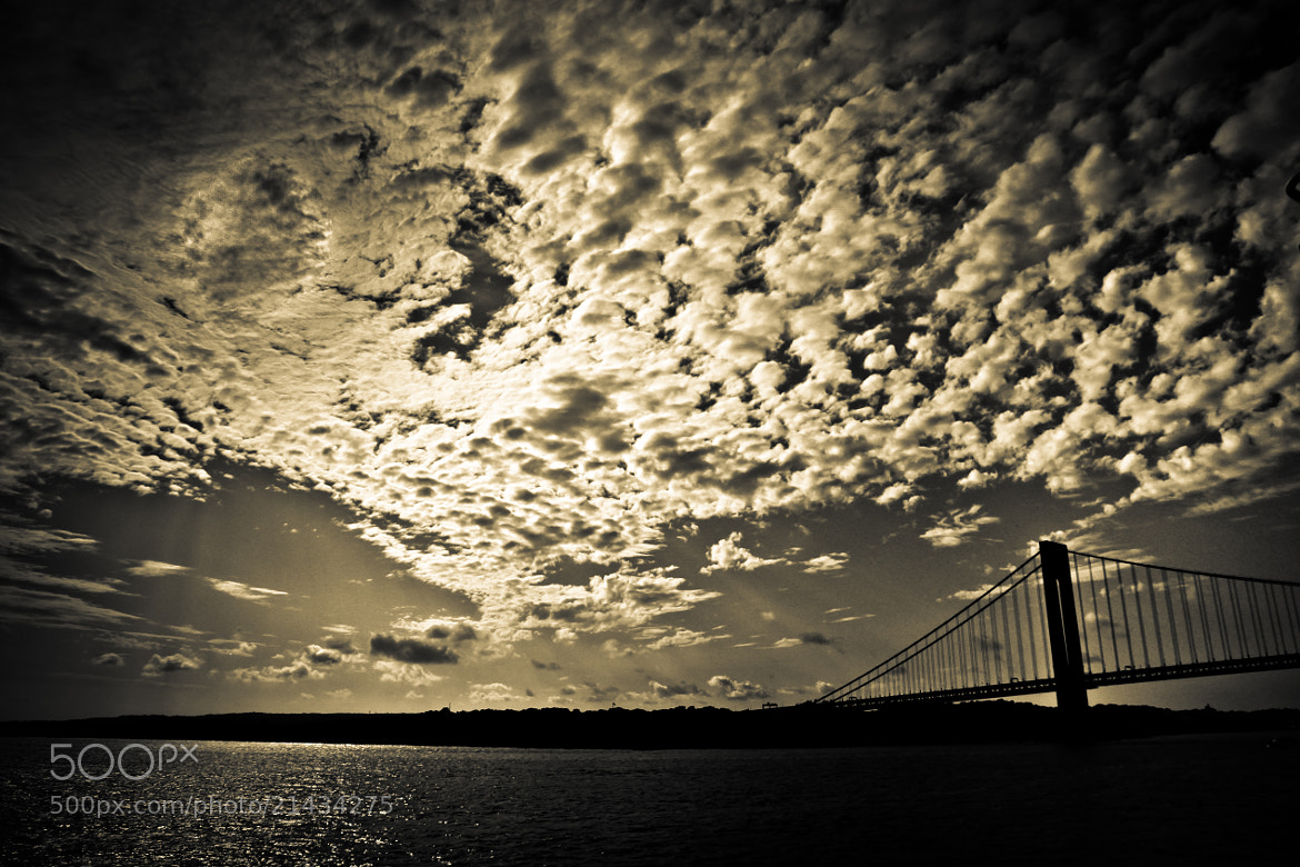 Photograph Verrazano Silhouette by Kush Patel on 500px