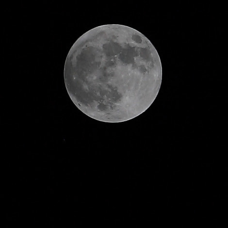 Photograph MOON by freddy4 on 500px